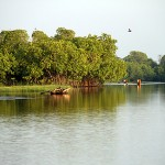 Arugam-Bay-Lagoon