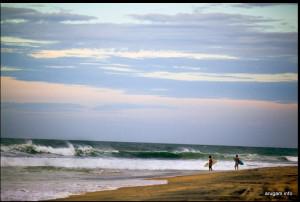 Surfers at Arugam Bay