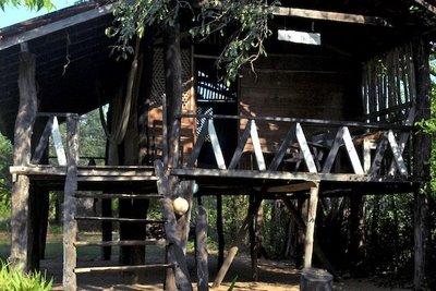 Sooriya's Tree house